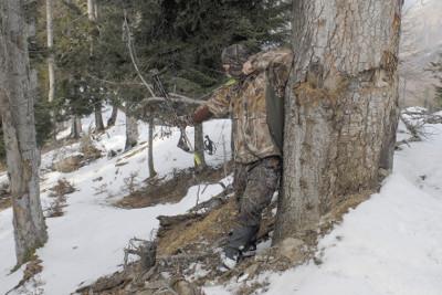 Calendrier des formations chasse à l'arc